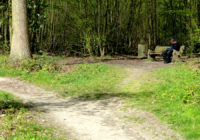 Memory Benches | Hadleigh Woods, Essex